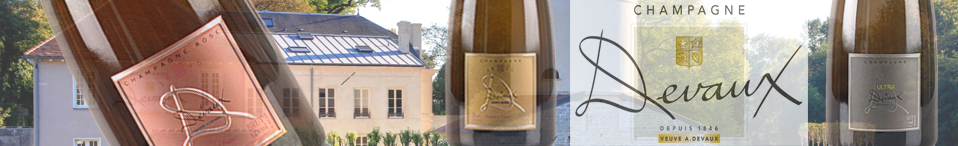 Șampanii Banner