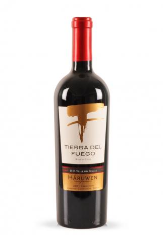 Vin Tierra del Fuego, Carmenere, Cabernet, Syrah, Haruwen, 2009 (0.75L) Image